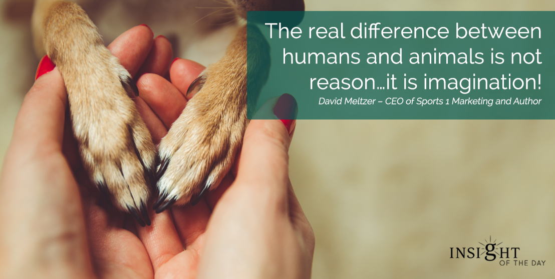 motivational quote: The real difference between humans and animals is not reason…it is imagination!