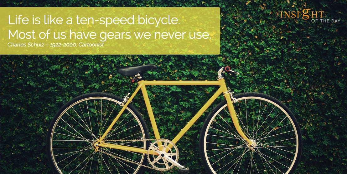 motivational quote: Life is like a ten-speed bicycle. Most of us have gears we never use.