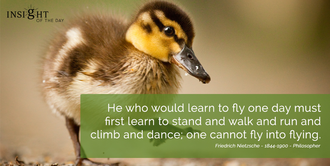 motivational quote: He who would learn to fly one day must first learn to stand and walk and run and climb and dance; one cannot fly into flying. Friedrich Nietzsche - 1844-1900 - Philosopher width=