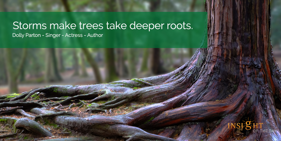 motivational quote: Storms make trees take deeper roots.  Dolly Parton - Singer - Actress - Author
