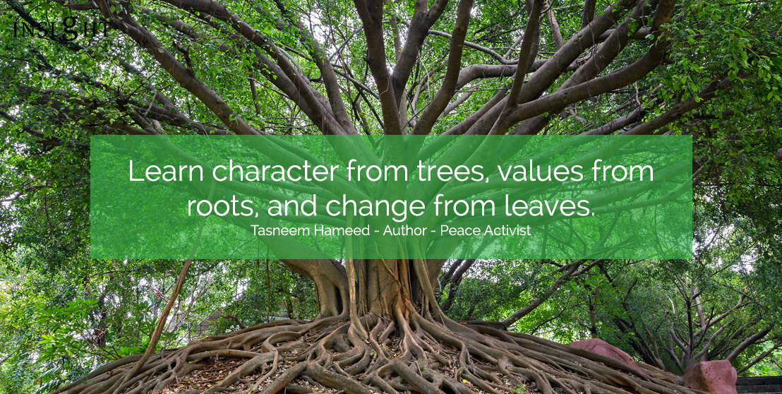 motivational quote: Learn character from trees, values from roots, and change from leaves.  Tasneem Hameed - Author - Peace Activist