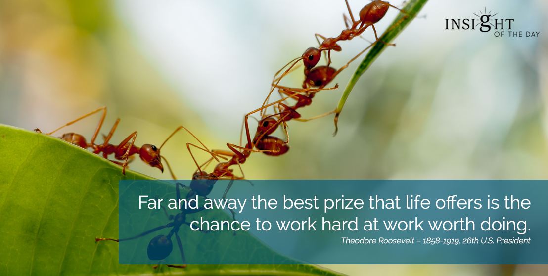 motivational quote: Far and away the best prize that life offers is the chance to work hard at work worth doing. Theodore Roosevelt – 1858-1919, 26th U.S. President