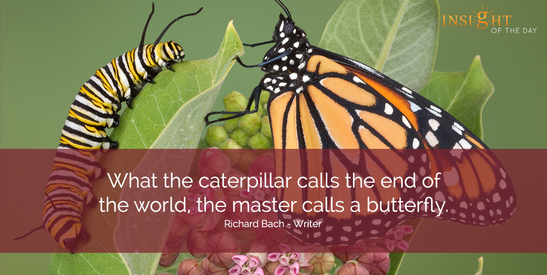motivational quote: What the caterpillar calls the end of the world, the master calls a butterfly.  Richard Bach - Writer