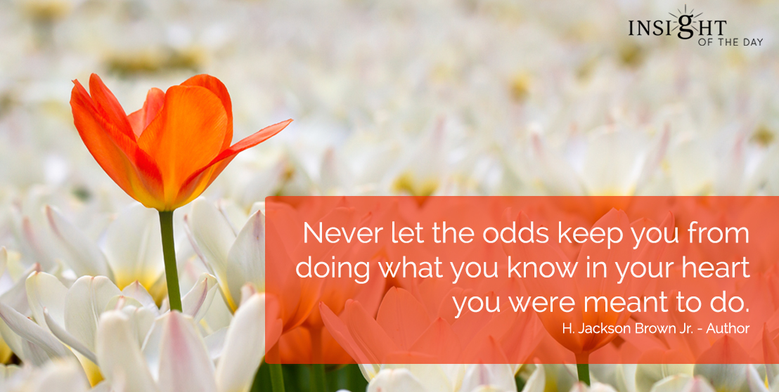 motivational quote: Never let the odds keep you from doing what you know in your heart you were meant to do. H. Jackson Brown Jr. - Author