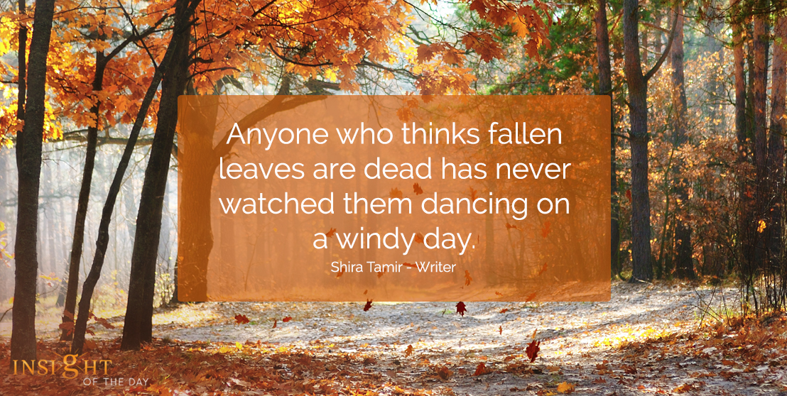 motivational quote: Anyone who thinks fallen leaves are dead has never watched them dancing on a windy day.  Shira Tamir - Writer