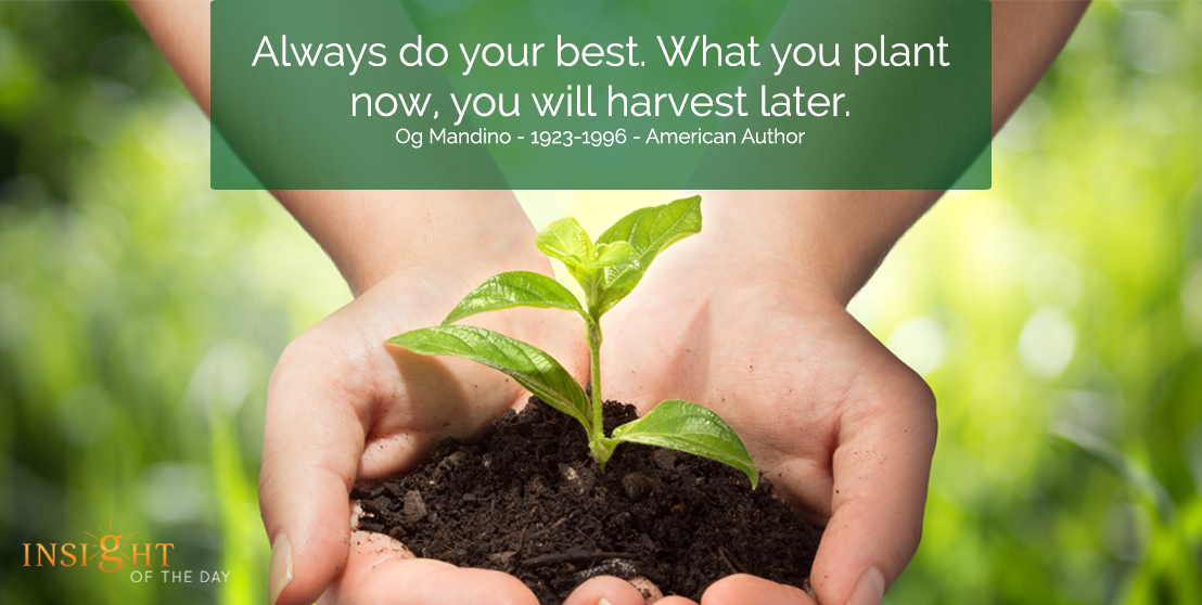 motivational quote: Always do your best. What you plant now, you will harvest later.  Og Mandino - 1923-1996 - American Author