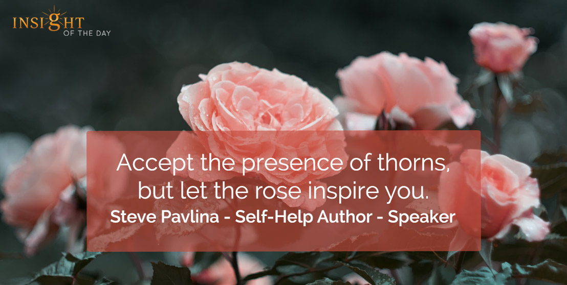 motivational quote: Accept the presence of thorns, but let the rose inspire you.    Steve Pavlina - Self-Help Author - Speaker