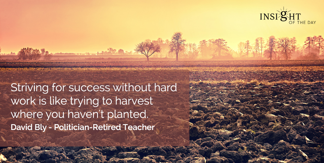 motivational quote: Striving for success without hard work is like trying to harvest where you haven't planted. David Bly - Politician-Retired Teacher