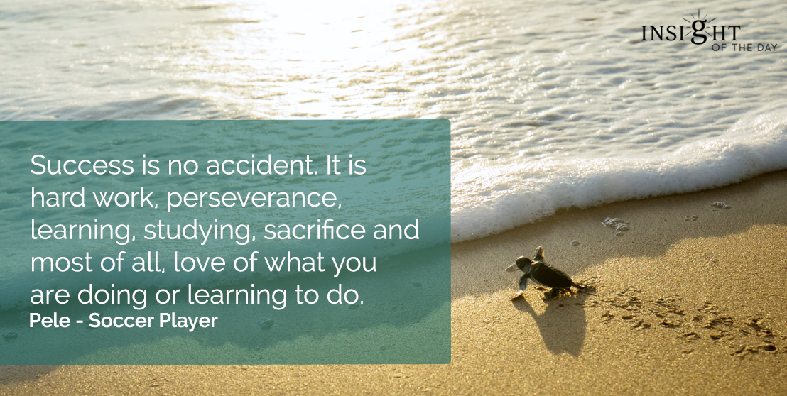 motivational quote: Success is no accident. It is hard work, perseverance, learning, studying, sacrifice and most of all, love of what you are doing or learning to do.  Pele - Soccer Player