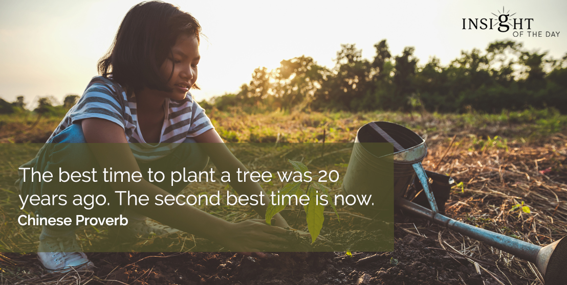 motivational quote: The best time to plant a tree was 20 years ago. The second best time is now. Chinese Proverb