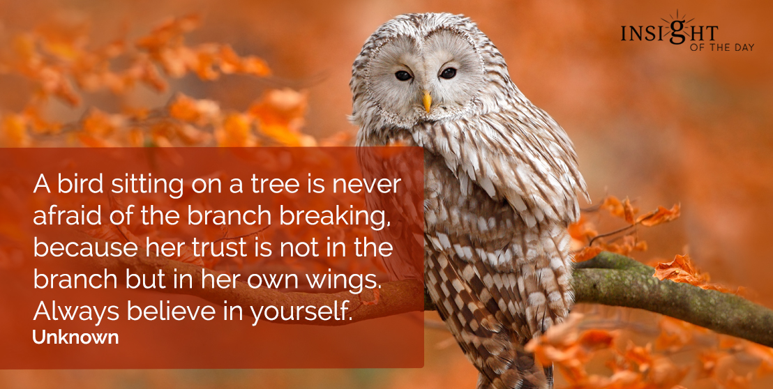motivational quote: A bird sitting on a tree is never afraid of the branch breaking, because her trust is not in the branch but in her own wings. Always believe in yourself.  Unknown